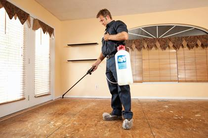 miller-and-sons-carpet-one-hemet-ca-man-treating-floor